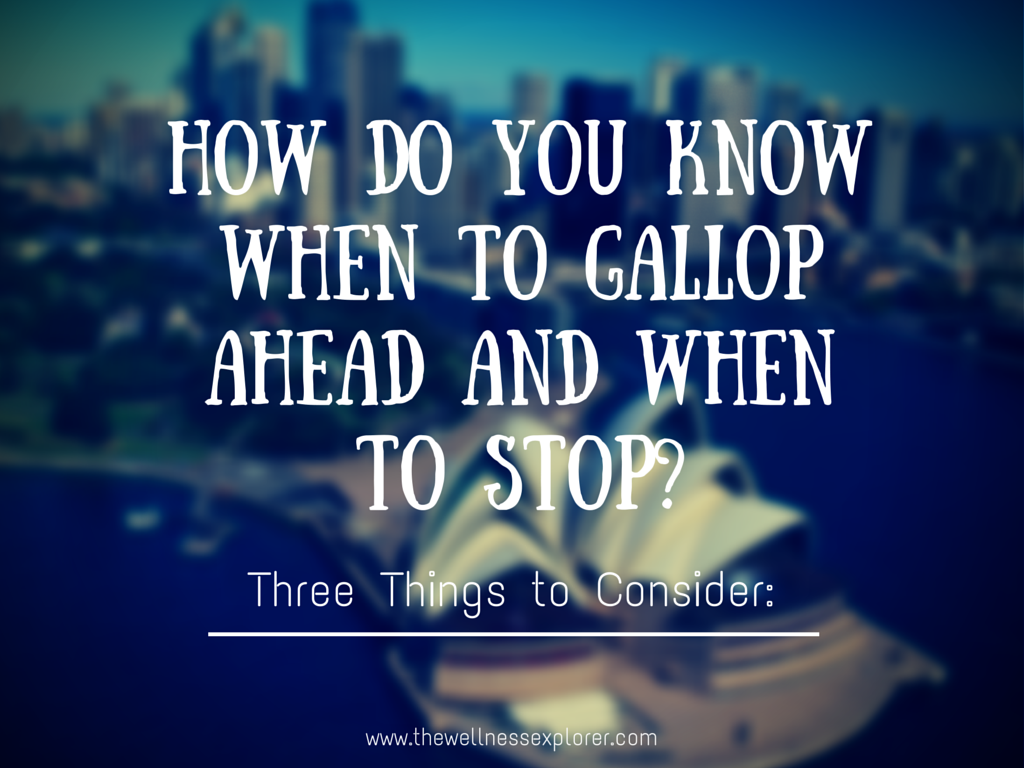 How do you know when to gallop ahead and when to stop?