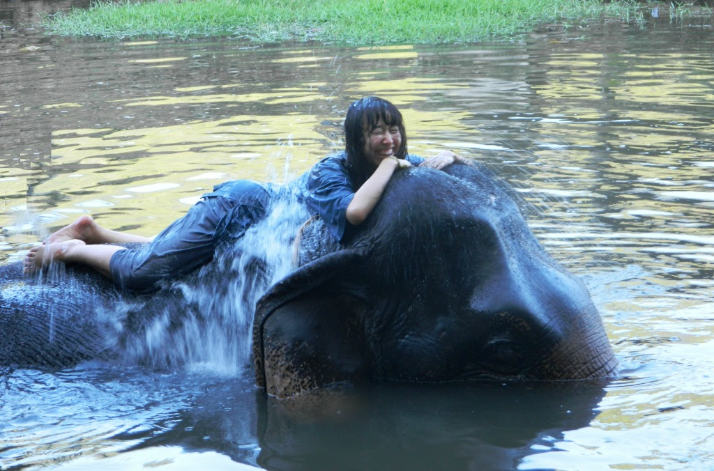 Swimming with elephants - one of the best experiences ever!