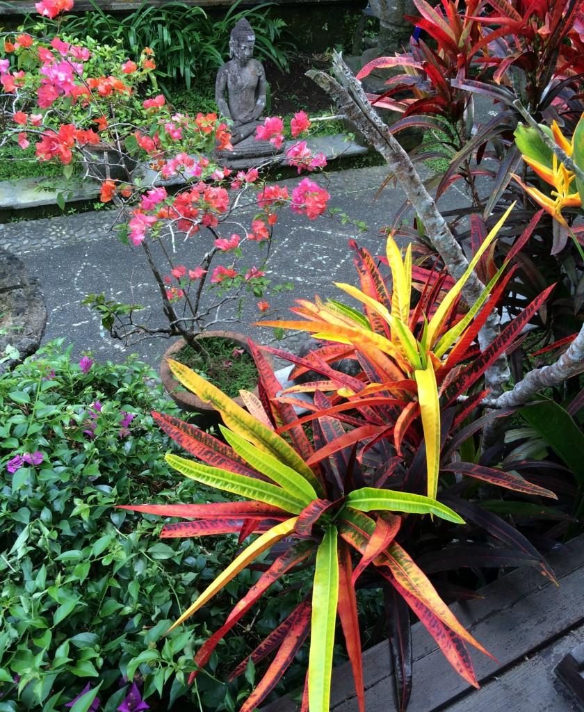 bright colourful nature