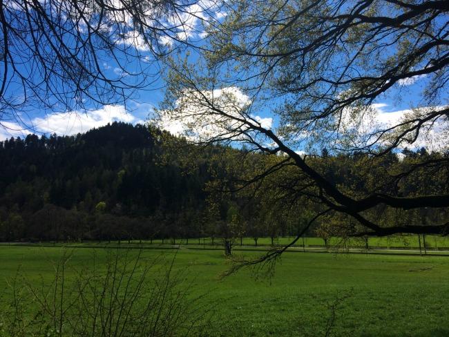 Black Forest, Kirchzarten Travels