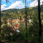 Traveling through Freiburg & hiking the Black Forest