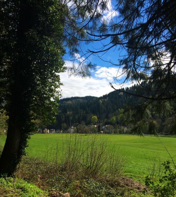 Freiburg countryside