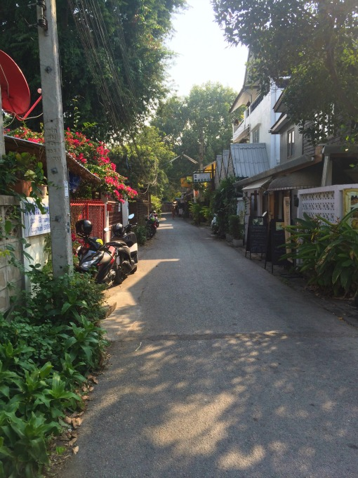 Chiang Mai wandering